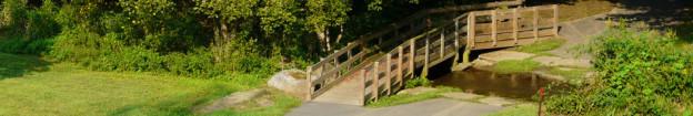 Park Wooden Bridge and Stream